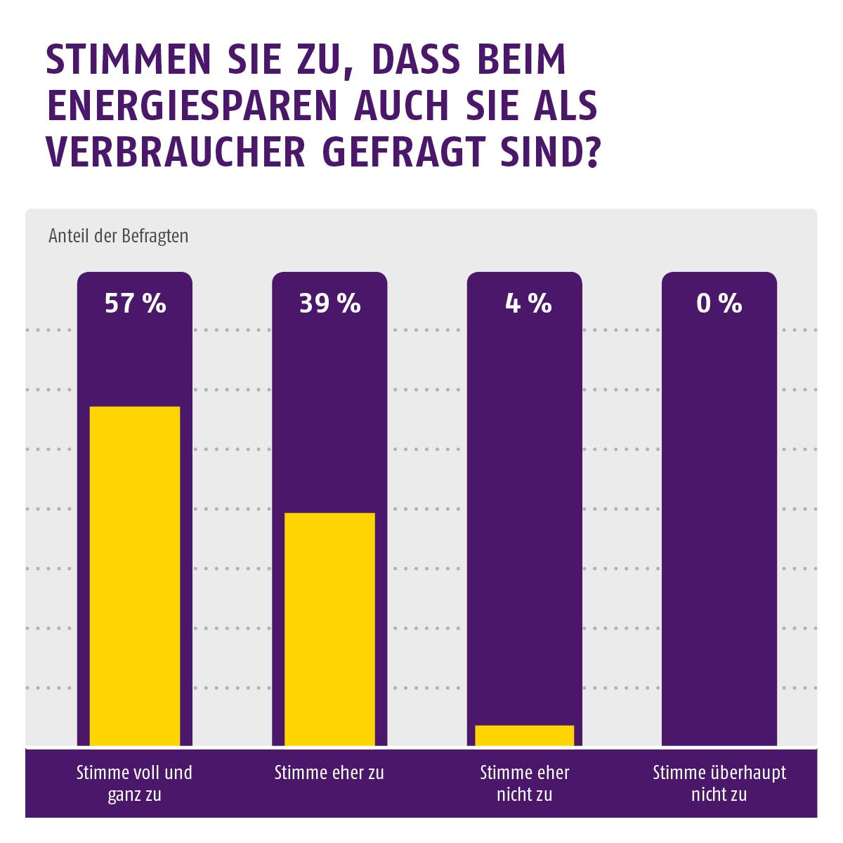 Umfrage zum Energiesparen: Ist auch der Verbraucher in der Pflicht?